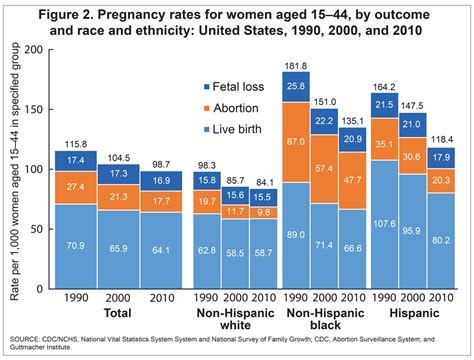 Products  Health E Stats  2010 Pregnancy Rates Among Us