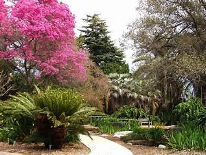 filela county arboretum knolljpg With los angeles county arboretum and botanic garden