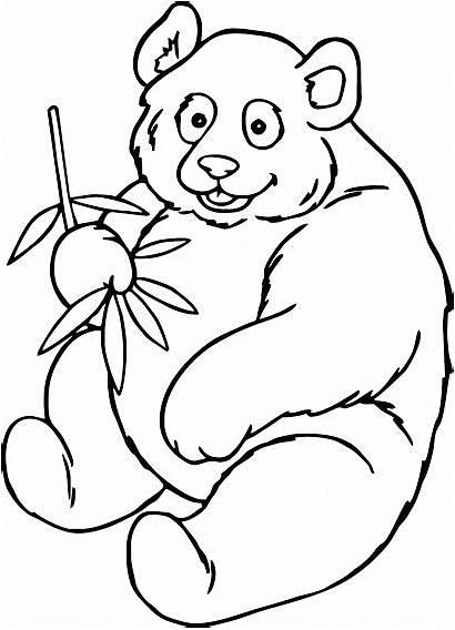 Panda Coloring Pages Adult Gambar Mewarnai Printable