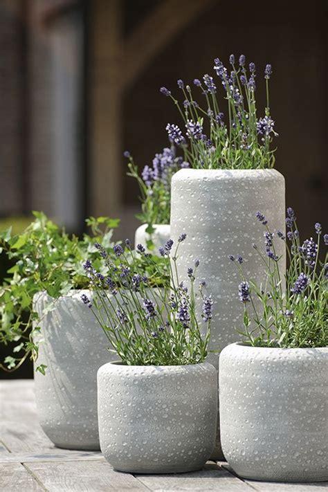25 best ideas about concrete planters on