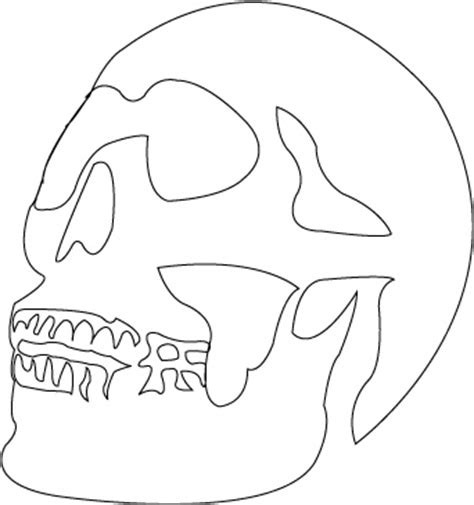 templates for wood cutouts skull stencil hodge podge skull stencil stenciling and wood cutouts