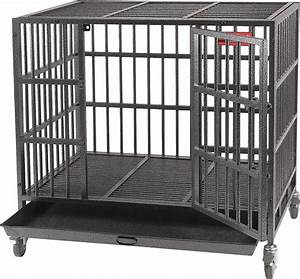 proselect empire dog cage large chewycom With big dog cage