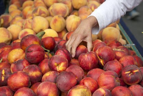 Mit Elektronen Zu Mehr Lebensmittelsicherheit ‹ Fruchtportal
