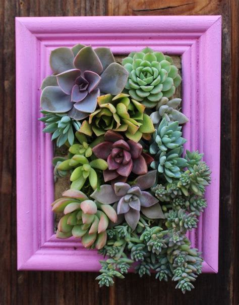 Vertical Succulent Garden Indoor by Diy Guide To Heating A Greenhouse House Plants