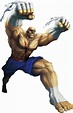 Sagat (Character) - Giant Bomb