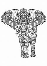 Coloring Animal Pages Mandala Elephant sketch template