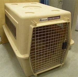 for sale basel dog crate english forum switzerland With dog crates and kennels for sale