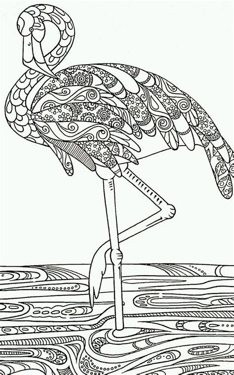 flamingo coloring page pin by l on coloring free coloring pages