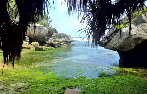 pantai sepanjang pantai  gunung kidul yogyakarta