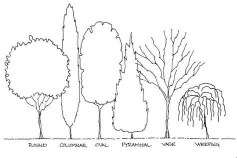 landscape design basics principles basic principles of landscape design figure 6 tree forms plants hort and lsm pinterest