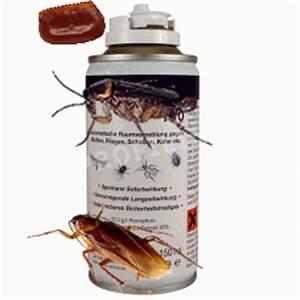 Gift Für Wespen : kakerlakenarten bek mpfen r ume vernebeln kakerlakenbek mpfung selbstvernebler 150ml ~ Whattoseeinmadrid.com Haus und Dekorationen