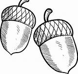 Acorn Coloring Buckeye Sheet Leaves Oak Drawing Line Acorns Coloringsky Getdrawings Clipartmag sketch template