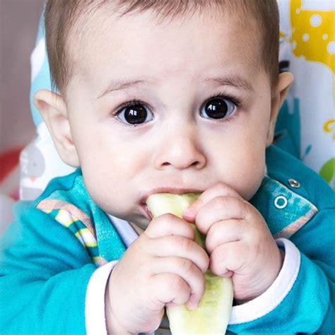 baby food recipes    bite   teething