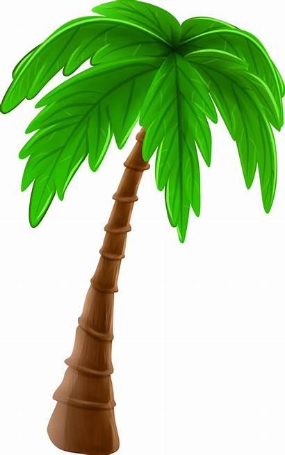 Palm Tree Coconut Clip Clipart Cartoon Transparent