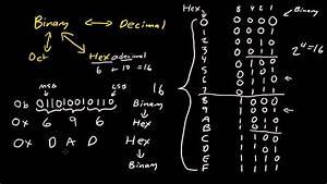 Binary  Hexadecimal  Octal Conversion