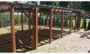 32 best images about dog run diy on pinterest for dogs With backyard dog enclosures