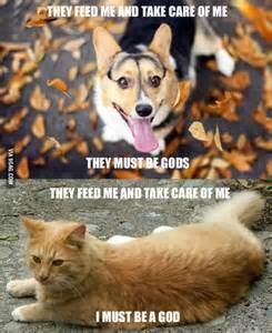 cat god quot they must be gods quot cat quot i must be god quot