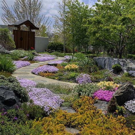 pin by nick smith on drought tolerant landscaping ideas