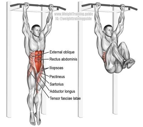 chair leg raises muscles 17 best ideas about hanging leg raises on