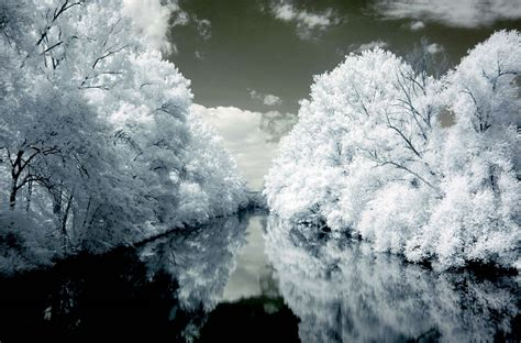 home design alternatives how to shoot digital infrared photography