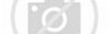 jefferson state air rifles Th?id=OIP