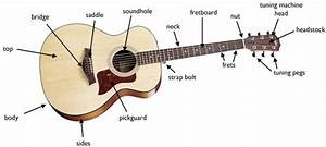 Named Of Guitar Parts