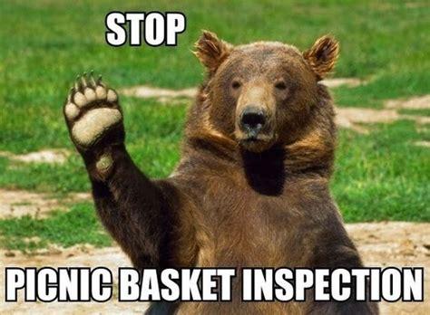 Funny Bear Memes - 028 funny captions 017 bear stop picnic basket inspection jpg 600 215 442 pixels cool stuff
