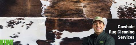 Cowhide Rug Maintenance by Cowhide Rug Cleaning Services Kiwi Cleaning Services