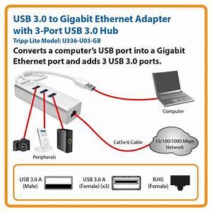 Amazon Com  Tripp Lite Usb 3 0 To Dual Port Gigabit