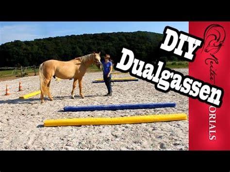 equikinetic muskelaufbautraining fuer pferde doovi