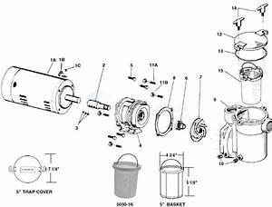 Sta-rite Cf Pump Parts