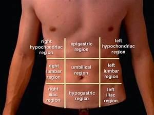 The Health Website : Appendicitis