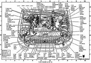 1998 Expedition Engine Diagram : on a1998 ford expedition where is the rpo relay block ~ A.2002-acura-tl-radio.info Haus und Dekorationen