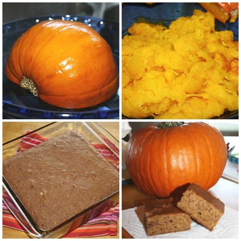 pumpkin activities and learning ideas for fall 951 | pumpkin activities for preschool 1024x1024