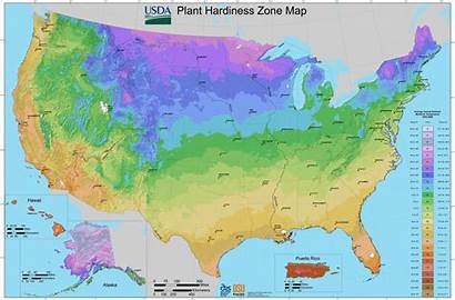Zone Hardiness Map Cold Succulents Plant Usda