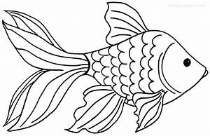 Drawn goldfish fish line - Pencil and in color drawn ...