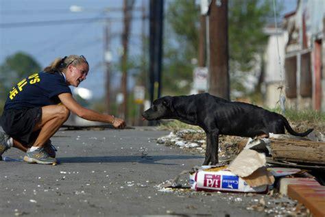 animal rescue  control  montgomery county buy texas