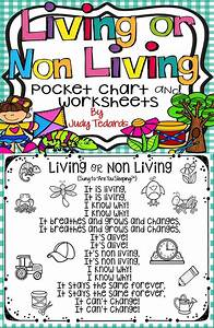 Kids Love Pocket Chart Activities And They Will Love This