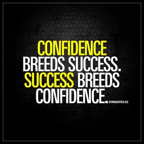 confidence breeds success success breeds confidence gym