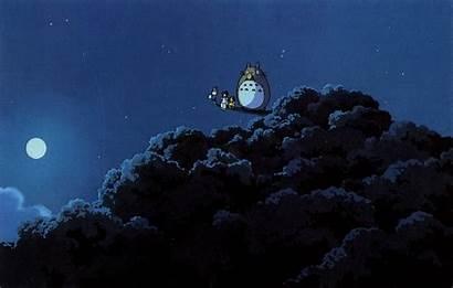 Totoro Miyazaki Neighbor Anime Hayao Background Wallpapers