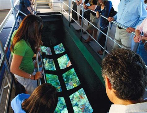Glass Bottom Boat Que Significa by Glassbottom Boats Key West Travel Guide