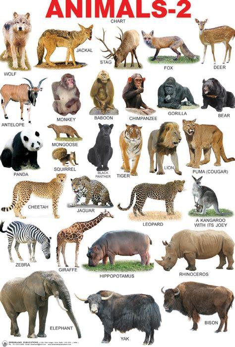 sea bathroom ideas animals chart