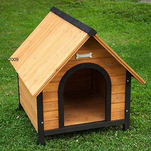 dog and house With easy dog house