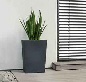 Pflanzkübel Fiberglas Rostoptik : pflanzk bel fiberglas welche sind die vorteile der k bel aus dem modernen material ~ Sanjose-hotels-ca.com Haus und Dekorationen