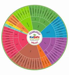 The Plant Therapy Fragrance Wheel  U2014 Explained