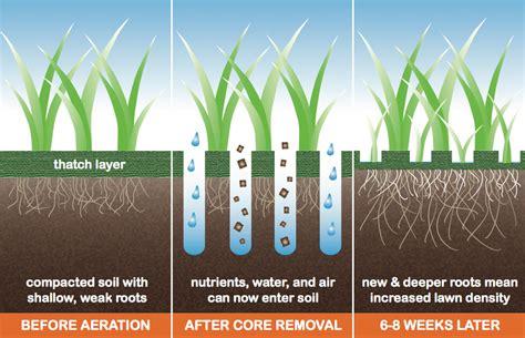 lawn aeration lawn aeration atlanta ga core aeration lawn treatment simply geen