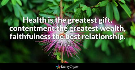 health   greatest gift contentment  greatest