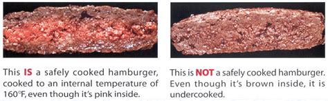 hamburger temp ground beef safe handling and cooking food safety news
