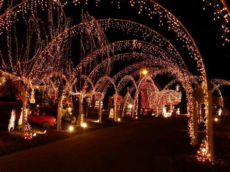 heres   brighten  wedding  fairy lights