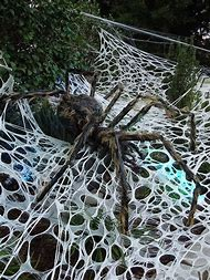 spider web halloween decorations